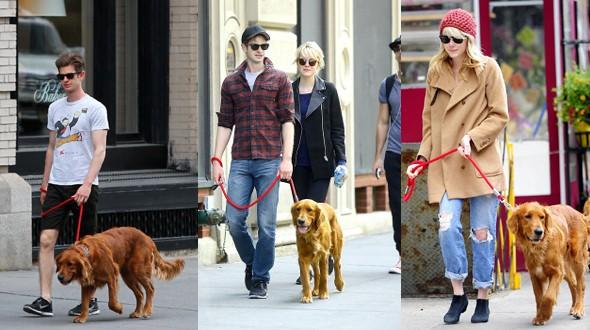 O casal Emma Stone e Andrew Garfield adotaram um golden retrivier de 2 anos chamado Ren (Foto: .)