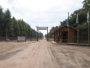 Área de Estação Experimental de Ciências Florestais de Itatinga pode ser desapropriada, diz Esalq - Piracicaba (Foto: Luciana Joia de Lima)