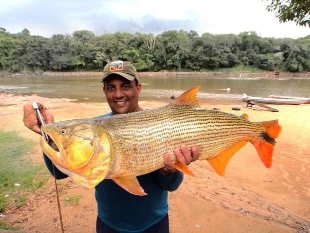 Bombeiro pesca dourado de 11kg e 95 cm no Rio Mogi em Pirassununga, SP (Foto: Fabio Sussel/ Arquivo Pessoal)