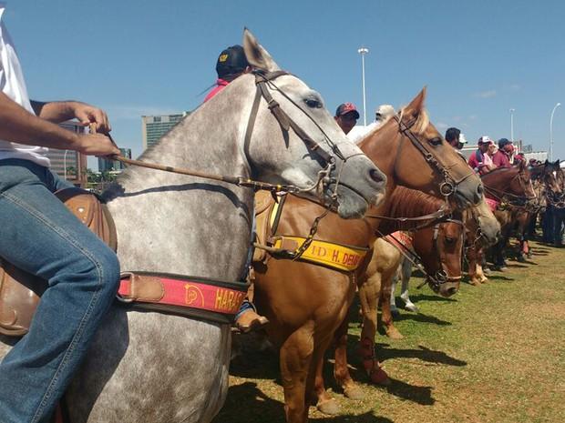 Vaqueiros alinhados na Esplanada em protesto contra proibição da vaquejada (Foto: Elielton Lopes/G1)