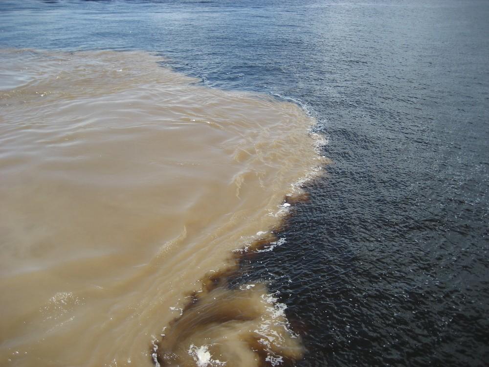 Encontro do Rios Negro e Amazonas (Foto: Guentermanaus / Shutterstock)