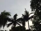 Pancadas de chuva continuam nas regiões sul e leste de MS, afirma Inmet