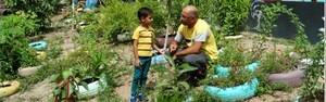 Trabalho escolar vira projeto ambiental; veja a história (Onofre Martins/Rede Amazônica)