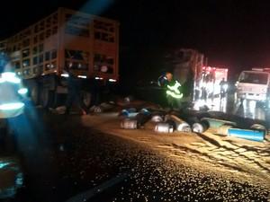 Homem morre em acidente na BR-262 próximo a Córrego Danta (Foto: PRF/Divulgação)