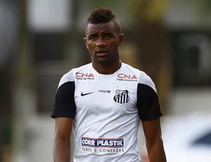 Cicinho Santos (Foto: Ricardo Saibun / Divulgação Santos FC)