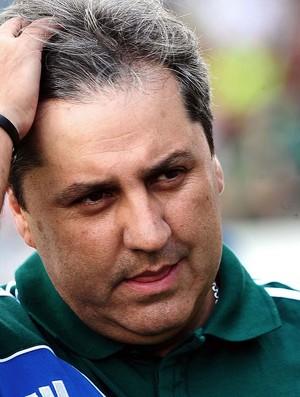 Gilson Kleina no jogo do Palmeiras contra o Botafogo (Foto: Marcos Ribolli / Globoesporte.com)
