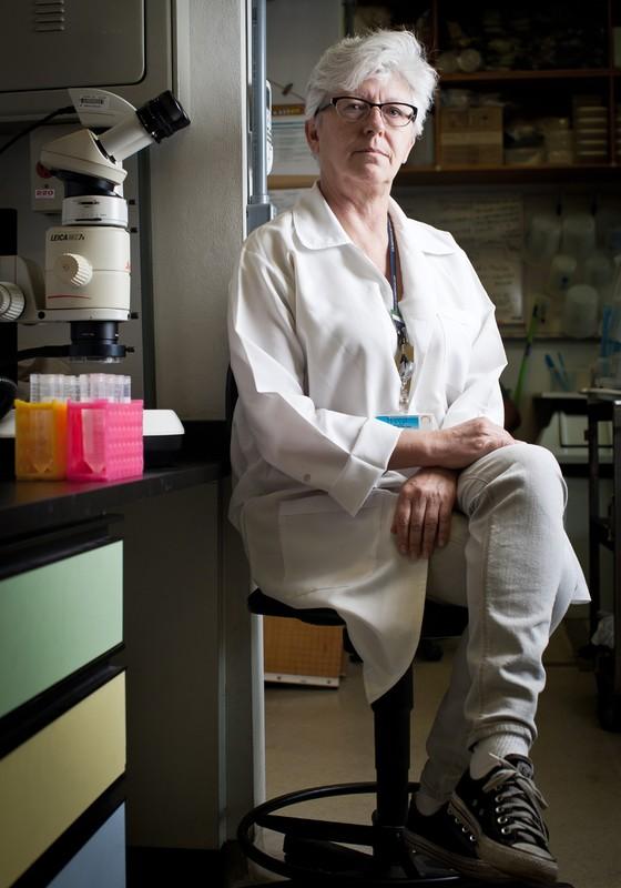 pesquisadora Margareth de Lara Capurro (Foto: Letícia Moreira/ÉPOCA)