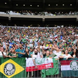 Festa torcida Palmeiras (Foto: Marcos Ribolli)