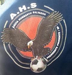 Escudo Águia do Humberto Salvador (Foto: Divulgação)