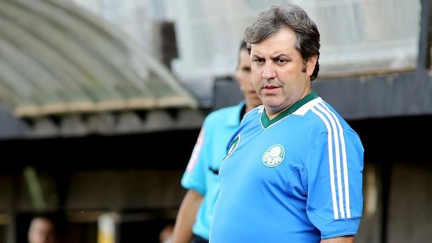 gilson kleina Bragantino x Palmeiras (Foto: Luis Moura/Agência Estado)