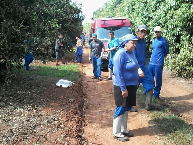 Funcionários da fazenda foram picados por enxame de abelhas (Foto: Divulgação/ Bombeiros Tatuí)