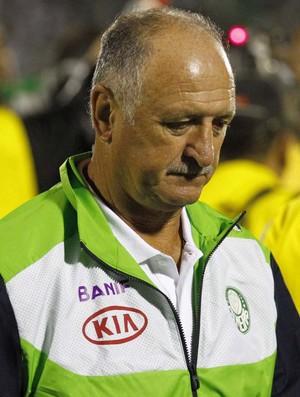 Felipão, Guarani x Palmeiras (Foto: Gustavo Tilio / Globoesporte.com)