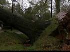 Costa Leste dos EUA tenta retomar rotina após supertempestade Sandy