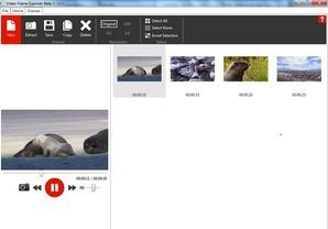 Video Frame Explorer