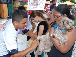 Vacinação antirrábica em São Luís (Foto: Semus)