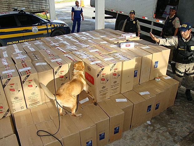 Cãe farejador da PRF em ação - Apreensão de carga de cigarro contrabandeado (Foto: Divulgação / Polícia Rodoviária Federal)