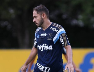 Régis Palmeiras (Foto: Cesar Greco/Ag Palmeiras/Divulgação)