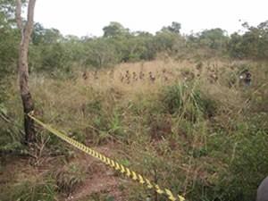 Suposto corpo de garota foi achado em cova rasa no meio do mato (Foto: Denise Soares / G1)