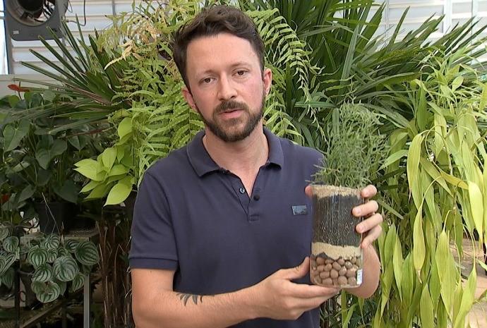 Rafael Ferraz dá dicas de como cuidar da sua planta (Foto: Reprodução / TV TEM)