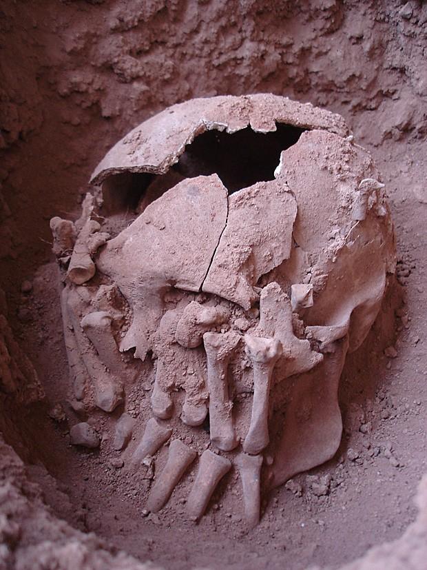 O crânio decepado achado na região de Lagoa Santa, em Minas Gerais (Foto: Danilo Bernardo)