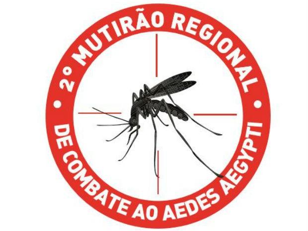 2º Mutirão de Combate ao Aedes aegypti (Foto: Reprodução/ EPTV)
