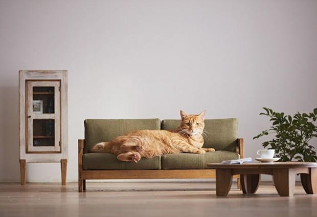 móveis para gatos (Foto: Divulgação)
