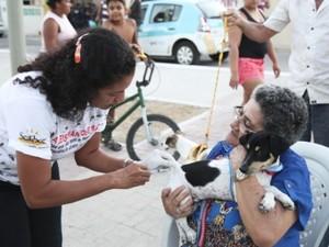 A meta deste ano é vacinar 260 mil animais, em 783 postos de vacinação (Foto: Thiago Gaspar)