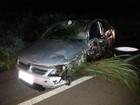 Carros batem de frente e três pessoas ficam feridas na BR-153 no Tocantins