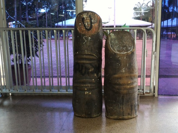 Peças foram encontradas e levadas para dentro de biblioteca em Goiânia (Foto: Vanessa Martins/G1)