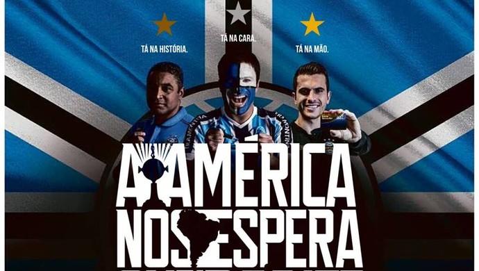 Grêmio campanha de sócios Libertadores Grêmio sócios (Foto: Reprodução)