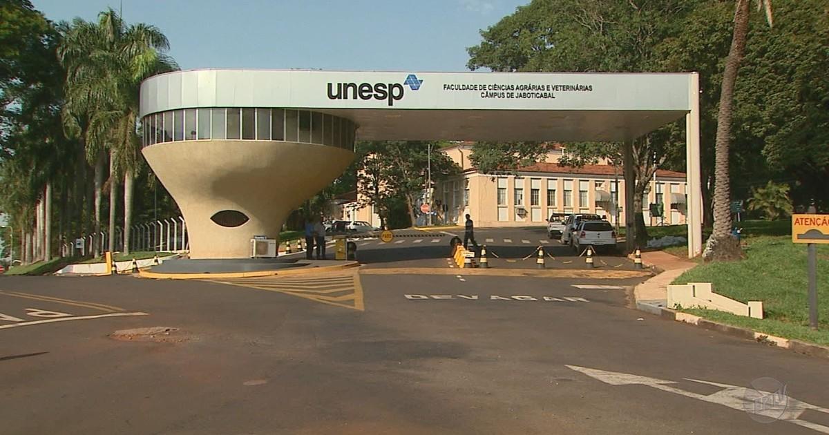 b02ca37bf7849 G1 - Furto de carros no campus da Unesp preocupa estudantes em Jaboticabal  - notícias em Ribeirão e Franca