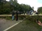 Depois do temporal, ventos ultrapassam 100 km/h no Sul do RS