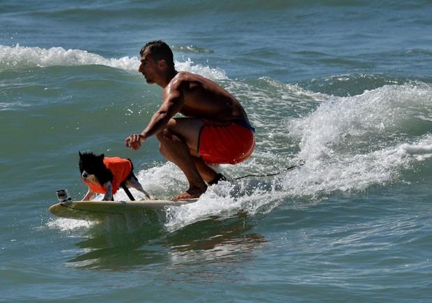 Cachorro surfa com seu dono em Huntington Beach (Foto: Mark Ralston/AFP)