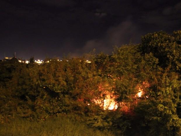 Incêndio na vegetação da Orla II de Petrolina, PE (Foto: Elizandro Oliveira/ TV Grande Rio)