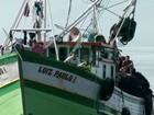 Defeso da sardinha começa em Angra, que registra menor produção do peixe