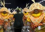 Peruche homenageia o samba no seu retorno ao Grupo Especial de SP