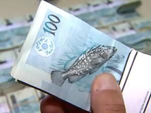 R$ 268 mil estavam escondidos há 6 dias em pátio da prefeitura de Ribeirão (Foto: Reprodução/EPTV)