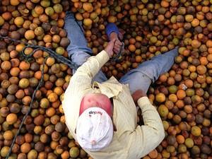 Homem ficou soterrado por laranjas em Brotas (Foto: Divulgação/Corpo de Bombeiros)
