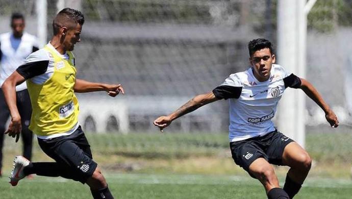 Santos Sub-17 (Foto: Pedro Ernesto Guerra Azevedo/Divulgação Santos FC)