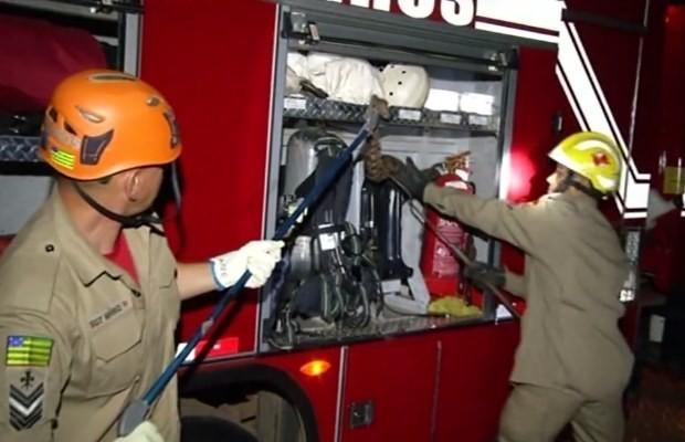 Cobra fugiu e se escondeu no caminhão do Corpo de Bombeiros, em Goiás (Foto: Reprodução/ TV Anhanguera)