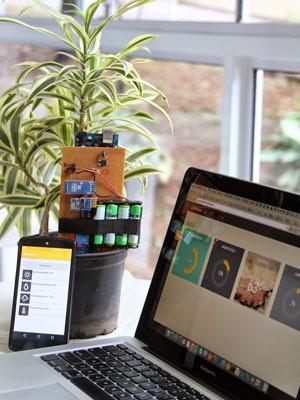 Sensor em 'horta inteligente' conectado à internet libera volume ideal de água na terra e evita desperdício