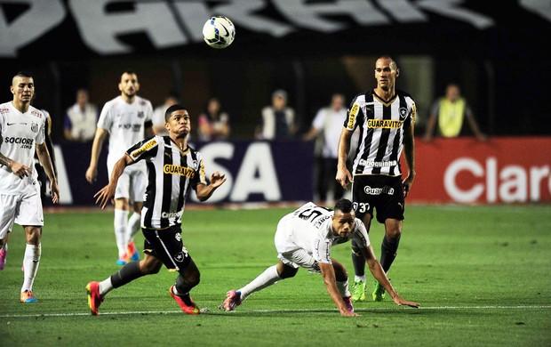 Santos X Botafogo (Foto: Marcos Ribolli)