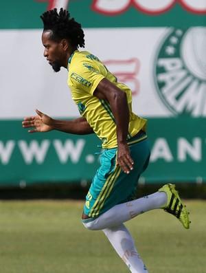 Zé Roberto Palmeiras (Foto: César Greco / Ag. Palmeiras / Divulgação)