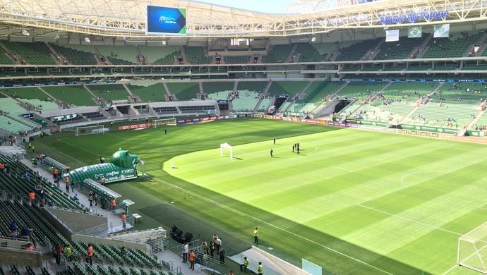 Arena, Palmeiras x Joinville (Foto: Felipe Zito)