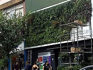 Jardins verticais (Foto: BBC)