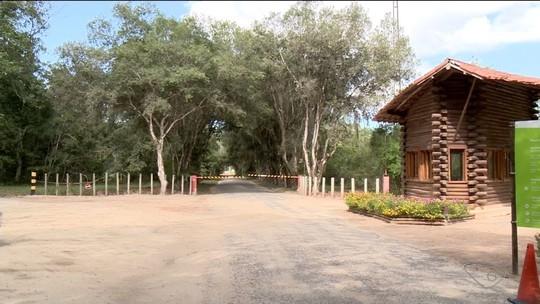 Macaco morto é encontrado na Reserva da Vale em Linhares, no ES