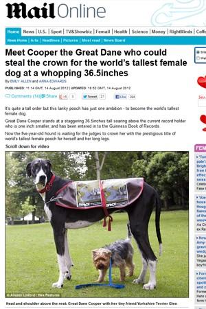 """A cadela Cooper, que está na disputa pelo recorde de mais alta do mundo (Foto: Reprodução/""""Daily Mail"""")"""