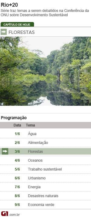 Ficha Florestas Rio+20 (Foto: Editoria de Arte/G1)