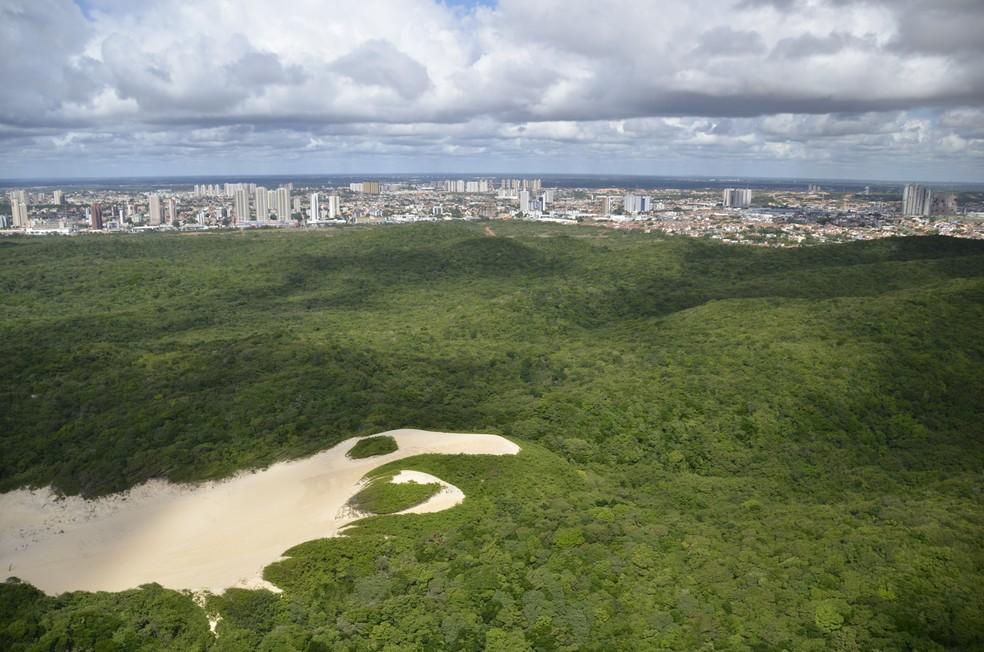 Parque das Dunas é uma das áreas de Mata Atlântica no RN (Foto: Ronaldo Diniz)