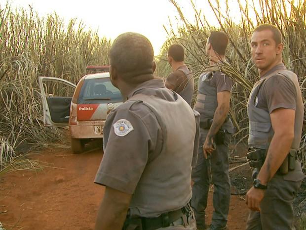 PMs continuam realizando buscas pelos fugitivos em canaviais próximos ao CPP (Foto: Reprodução/EPTV)